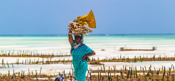 Zanzibaras (14 naktų) - Doubletree Resort by Hilton Zanzibar 4* viešbutyje su pusryčiais ir vakarienėmis