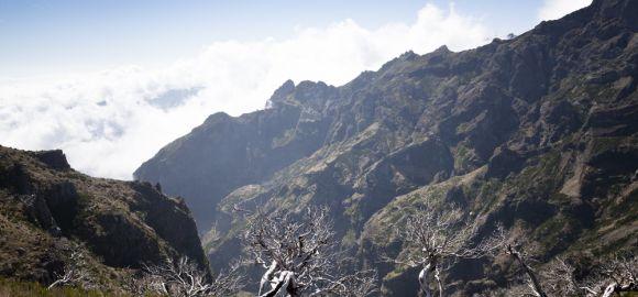 Madeira (14 naktų) - Rocamar & Royal Orchid 4* viešbutyje su pusryčiais ir vakarienėmis