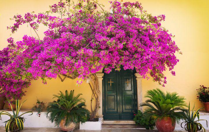 Korfu - kai įprasti žodžiai tampa bejėgiai apibūdinti tikrąjį grožį