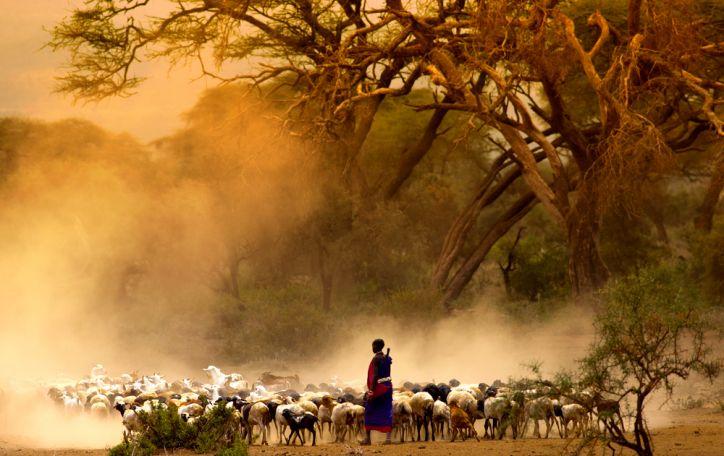 Kenija (9n.) - stačia galva nerkite į laukinį meilės romaną su gražuole Afrika