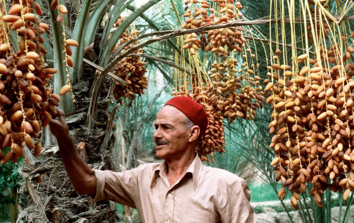 Tunisas - svaigus ir spalvingas prieskonių, jūros ir dykumų mišinys