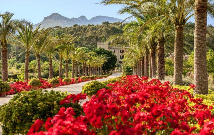 Maljorka - saulės nutviekstos, romantika pasaldintos ir jūra ošiančios atostogos