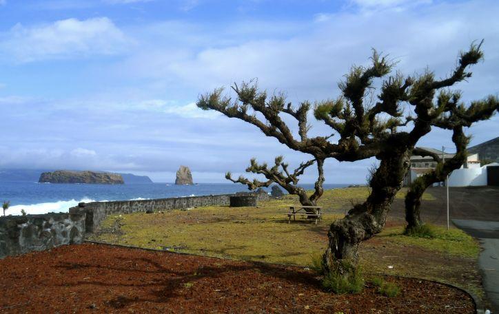 Azorų salos - pažintinė programa