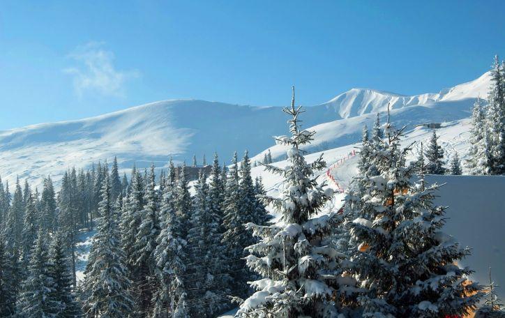 Kalėdos Bukovelyje - tiems, kurie nenori keliauti toli ir mokėti daug