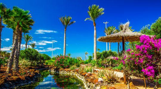 Ispanija,Fuerteventura